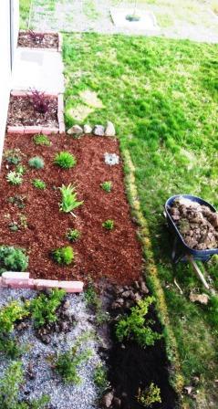 One year garden